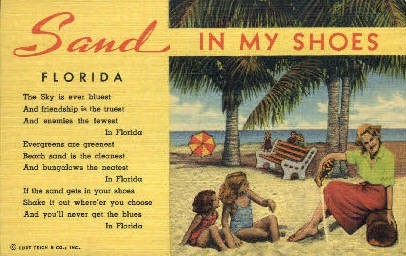 Sand - Misc, Florida FL Postcard