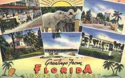 Gulf Coast - Misc, Florida FL Postcard