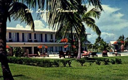 The Lodge - Everglades National Park, Florida FL Postcard