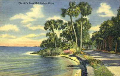Indian River, Florida, FL Postcard