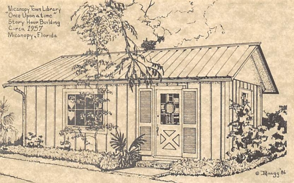 Micanopy Town Library Florida Postcard