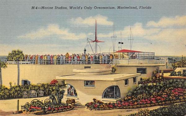 Marine Sudios, World's Only Oceanarium Marineland, Florida Postcard
