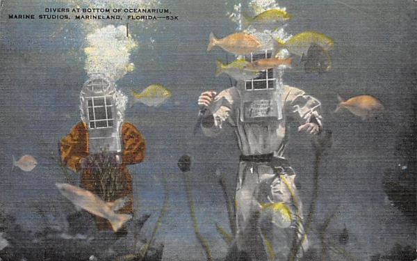Divers at Bottom of Oceanarium, Marine Studios Marineland, Florida Postcard