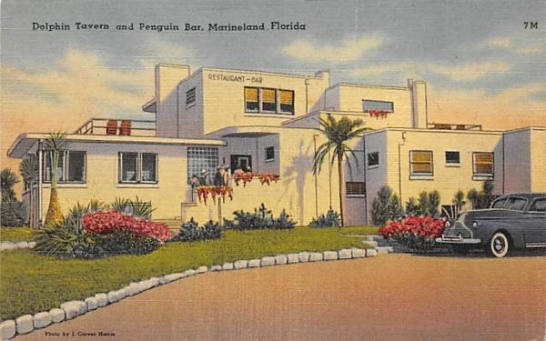 Dolphin Tavern and Penguin Bar Marineland, Florida Postcard