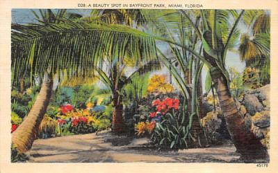 A Beauty Spot in Bayfront Park Miami, Florida Postcard