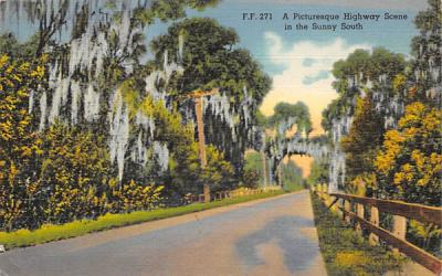 A Picturesque Highway Scene in the Sunny South Misc, Florida Postcard