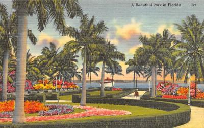 A Beautiful Park in Florida, USA Postcard