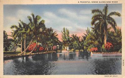 A Peaceful Scene Along New River Miami, Florida Postcard
