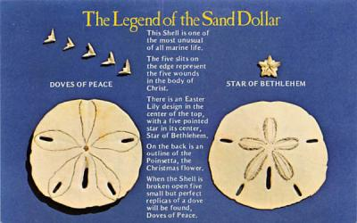 The Legend of the Sand Dollar Misc, Florida Postcard