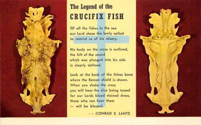The Legend of the Crusifix Fish Misc, Florida Postcard