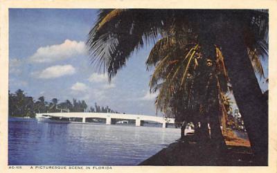 A Picturesque Scene in Florida, USA Postcard