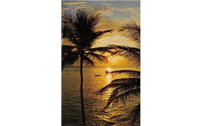 A Florida Sunset, USA Postcard