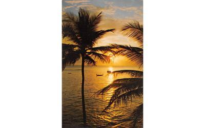 A Florida Sunset, USA Postcard