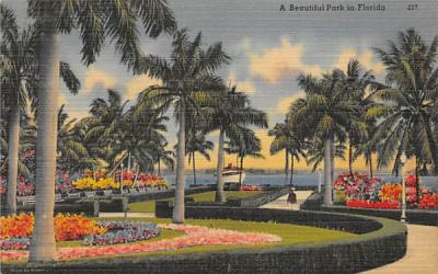 A Beautiful Park in Florida, USA Postcard