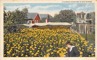 A Florida Backyard in Mid Winter, USA Postcard