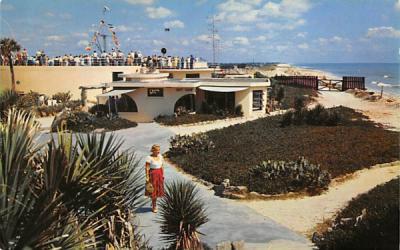 In the Beautiful Gardens of Marineland, FL, USA Florida Postcard