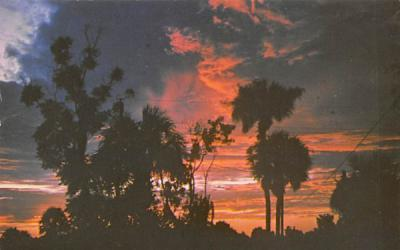 Brilliant Start of a New Day in Beautiful FL, USA Misc, Florida Postcard