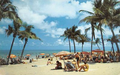 A Lovely Florida Beach, USA Postcard