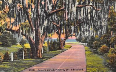 A Scene on U.S. Highway 301 in Dixieland Misc, Florida Postcard