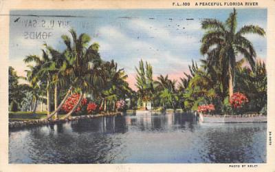 A Peaceful Florida River, USA Postcard