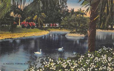 A Peaceful Florida Retreat, USA Postcard