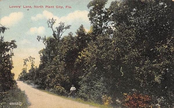 Lovers' Lane North Plant City, Florida Postcard