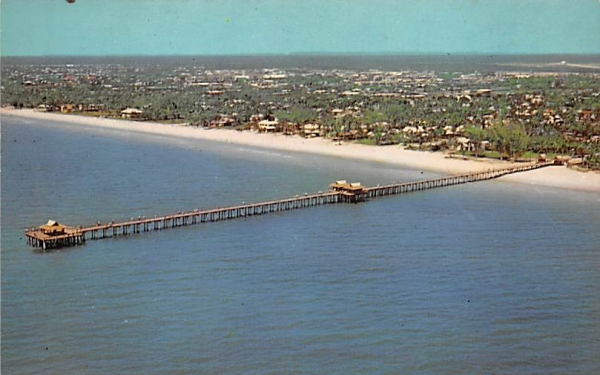 Fishing is Popular from the 1,000 Foot Municipal Pier Naples, Florida Postcard