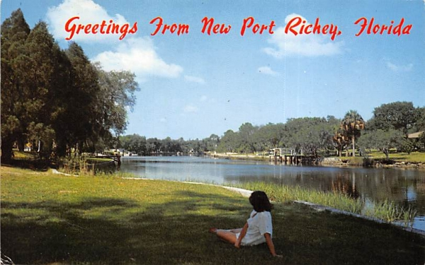 Greetings from New Port Richey, FL, USA New Port Rickey, Florida Postcard