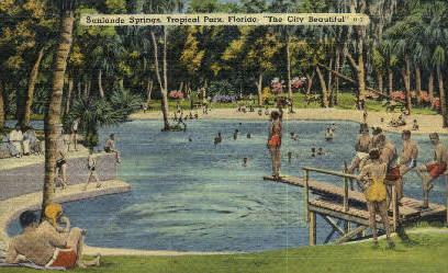 Sanlando Springs - Orlando, Florida FL Postcard