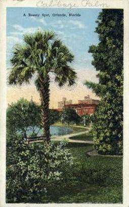Beauty Spot - Orlando, Florida FL Postcard