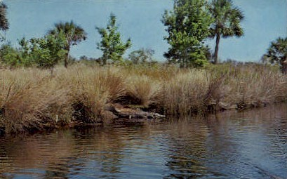 Tomoka River - Ormond Beach, Florida FL Postcard