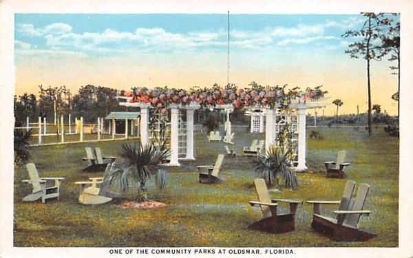 One of the Community Parks  Oldsmar, Florida Postcard