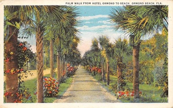 Palm Walk from Hotel Ormond to Beach Ormond Beach, Florida Postcard