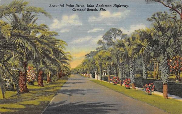 Beautiful Palm Drive, John Anderson Highway Ormond Beach, Florida Postcard