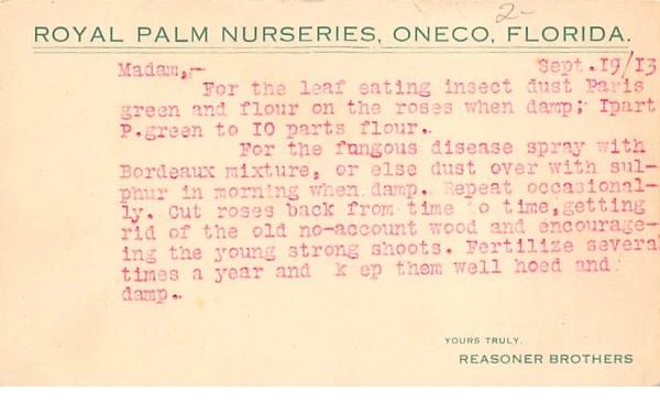 Royal Palm Nurseries Oneco, Florida Postcard