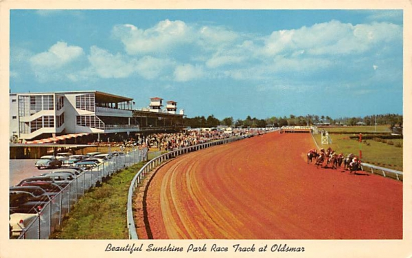 Beautiful Sunshine Park Race Track at Oldsmar Florida Postcard