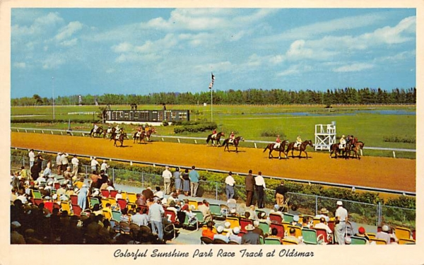 Colorful Sunshine Park Race Track at Oldsmar Florida Postcard