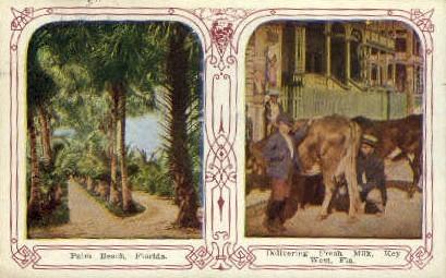 Misc - Palm Beach, Florida FL Postcard