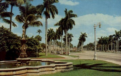 Royal Poinciana Way - Palm Beach, Florida FL Postcard