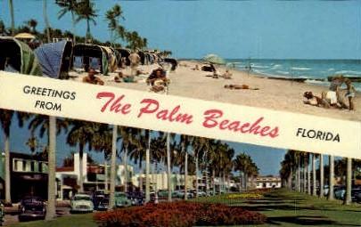 Palm Beaches - Florida FL Postcard