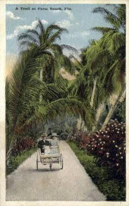 Trail - Palm Beach, Florida FL Postcard