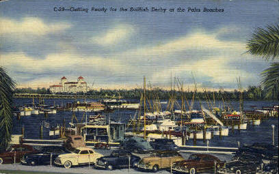 Sailfish Derby - Palm Beach, Florida FL Postcard