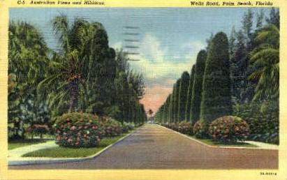 Wells Road - Palm Beach, Florida FL Postcard