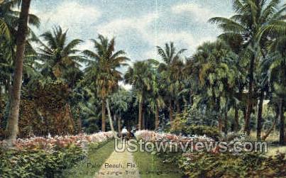 Jungle Trail - Palm Beach, Florida FL Postcard