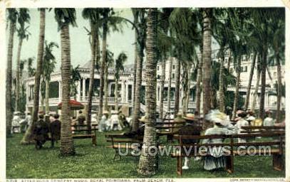 Royal Poinciana - Palm Beach, Florida FL Postcard