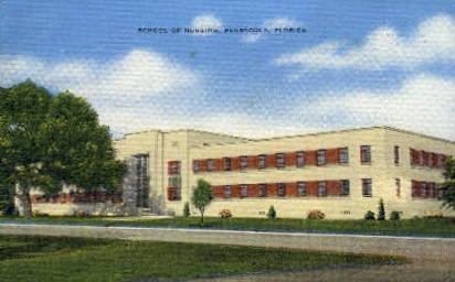 School of Nursing - Pensacola, Florida FL Postcard
