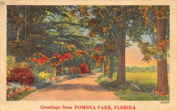 Greetings from Pomona Park, FL, USA Florida Postcard
