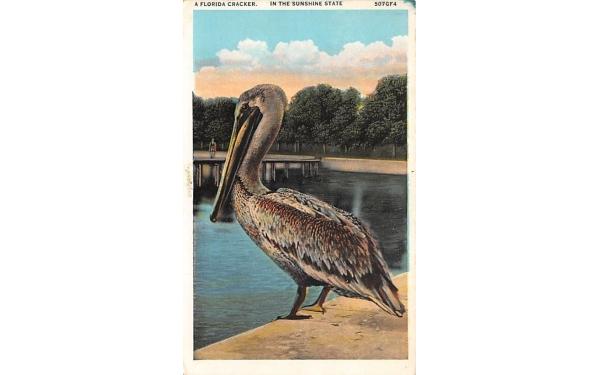 A Florida Cracker Postcard