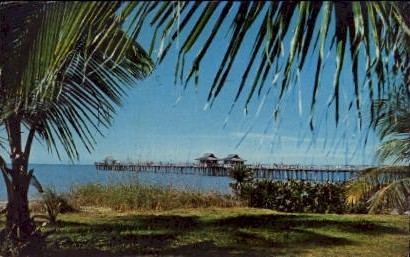 Naples Fishing Pier - Florida FL Postcard