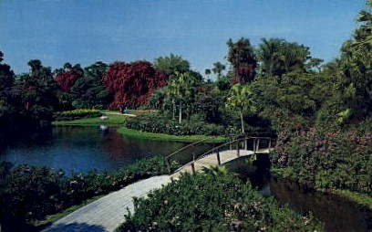 Colorful Scene - Cypress Gardens, Florida FL Postcard